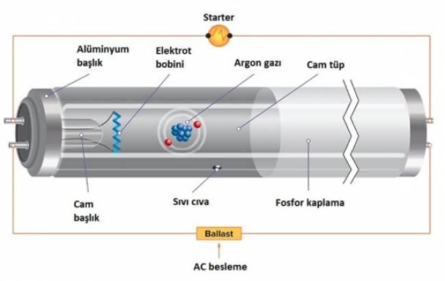 Elektron Balistiği