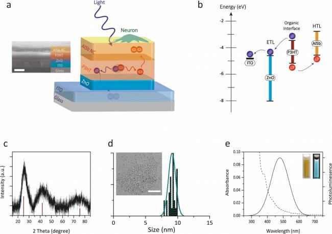 Alüminyum Antimonit Nanokristallere Dayalı Fotovoltaik Nöro-arayüz